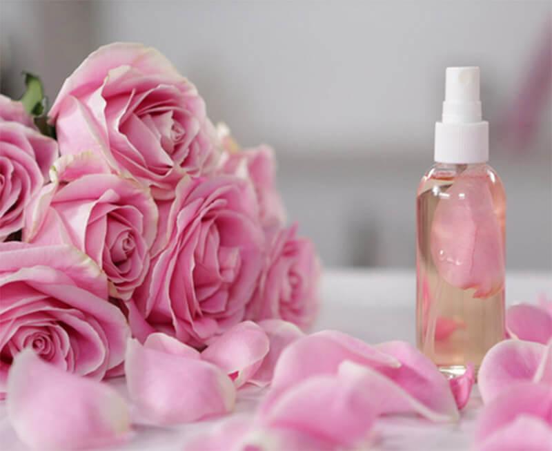 cách làm nước hoa hồng tinh khiết